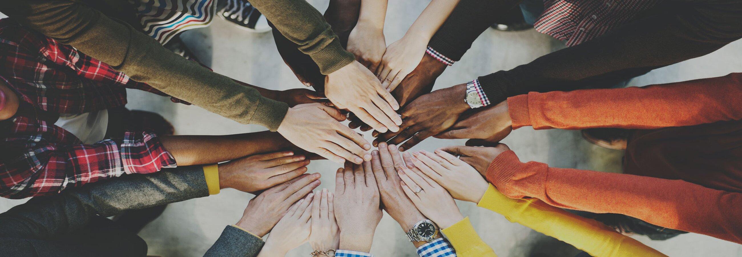 Si queremos la paz, cuidemos nuestra casa común